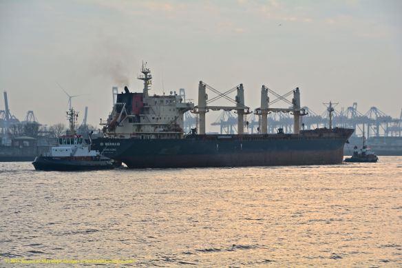 MV ID MERMAID 13 BMK_1710 @