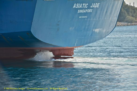 mv-asiatic-jade-12-bmk_4021