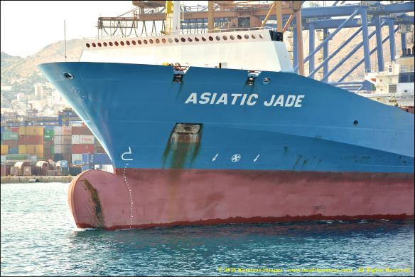 mv-asiatic-jade-8-bmk_3956