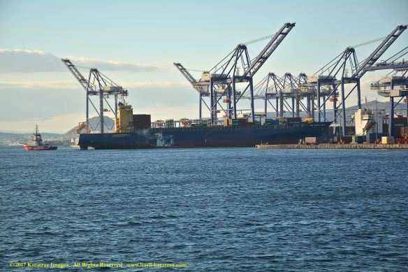 mv-new-jersey-trader-2-bmk_9970