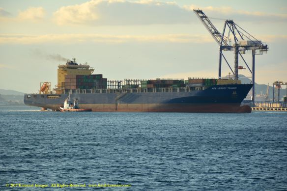 mv-new-jersey-trader-4-bmk_0007